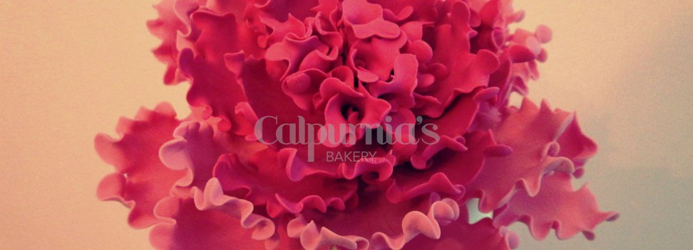 Calpurnia's Bakery